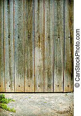 Old wooden door background withe pavement and plant