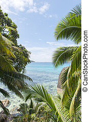 Dream beach on the island of La Digue, Seychelles, Indian...