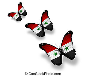 Three Syrian flag butterflies, isolated on white