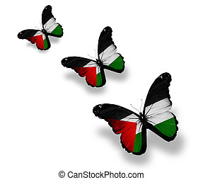 Three Palestinian flag butterflies, isolated on white