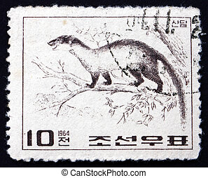 Postage stamp North Korea 1964 Yellow-throated Marten -...