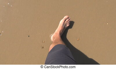 man feet walking on beach - man legs walking on golden sand...