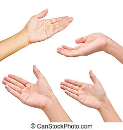 Variety of hands in different poses on white background