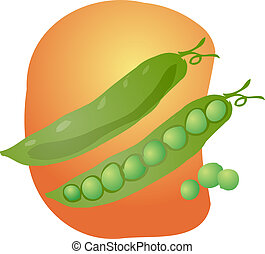 Peas illustration - Sketch of peas in a pod Hand-drawn...