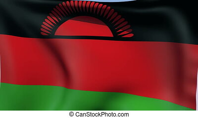 Flag of Malawi - Flags of the world collection - Malawi