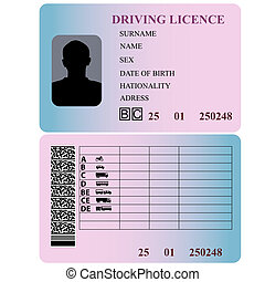 Driving license Vector illustration
