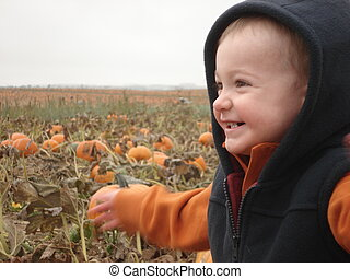 Little Boy Playing in the Pumpkins