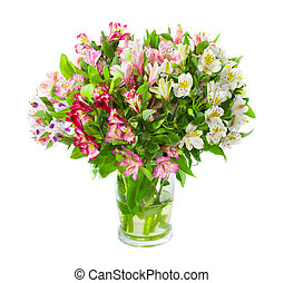 Bouquet of alstroemeria flowers in glass vase isolated over...