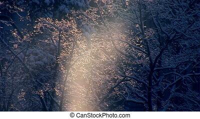 sun snow b