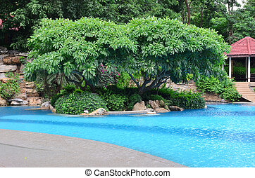 landscape with nobody swimming pool in hotel