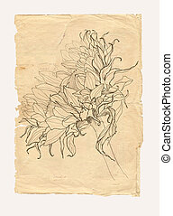 Sunflower drawing on old paper background