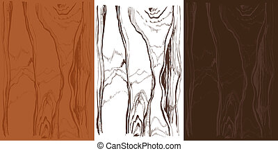 wood texture in different colors - wood texture isolated...
