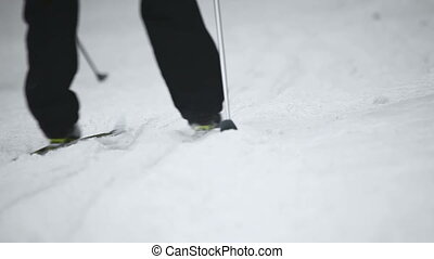 Skiing. - Skiers on the track.
