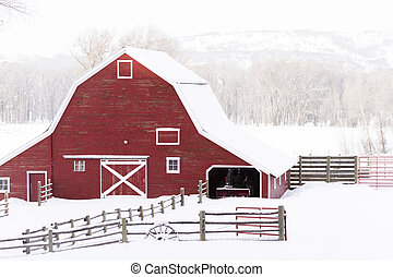 Red barn in snow on lamb farm.