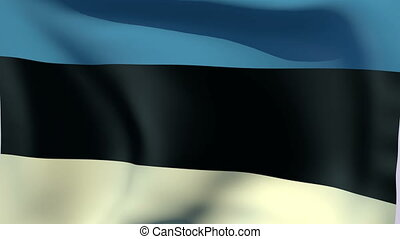 Flag of Estonia - Flags of the world collection - Estonia