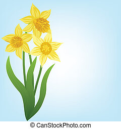 Daffodils - Spring background with daffodils and grass