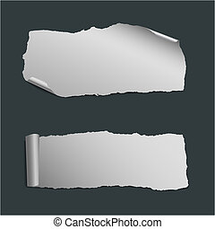 collection of  white ripped paper pieces
