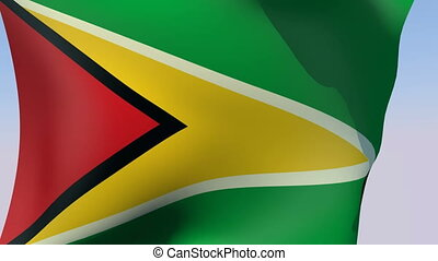Flag of Guyana - Flags of the world collection - Guyana