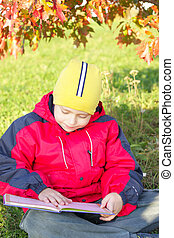 Reading under leaves - Boy reading book under autumn tree