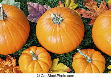 cropped view of halloween pumpkins with autumn leaves -...