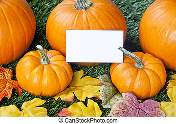 cropped view of halloween pumpkins with placard - Cropped...