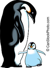 penguins - young and old penguin on the white backgroun on...
