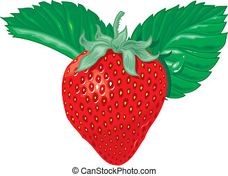 strawberry - sweet strawberry isolated on the white...