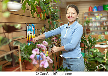 Female florist with Kalanchoe - Happy mature woman with...