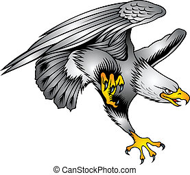 eagle - nice flying eagle on the white background