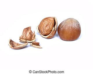 hazelnuts - Two hazelnuts isolated on white...