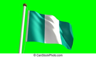 Nigeria flag video