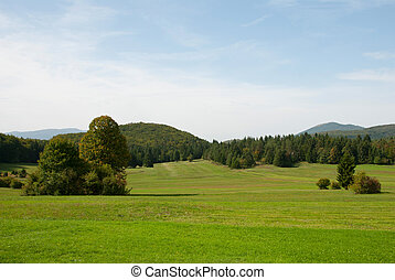Green meadows with forest - Green meadows landscape with...