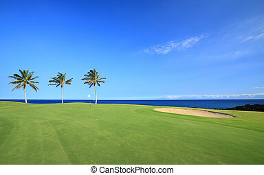 Golf Course on Ocean Coast - Green Hawaiian Golf Course on...