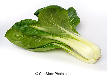 Whole pak choi (Brassica rapa) against white background