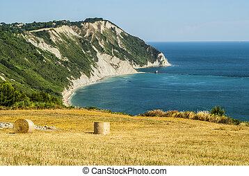 Conero - Cultivated coast - Conero Ancona, Marches, Italy -...