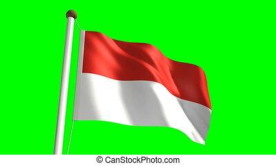 Monaco flag video