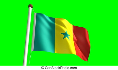 Senegalese flag video