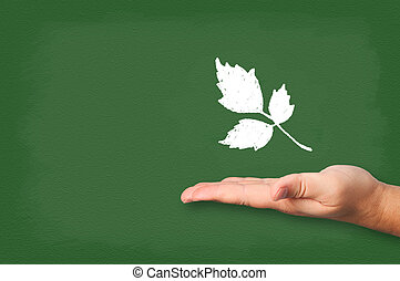 Leaves drawn chalk on blackboard with hand.