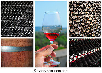 Wine collage. Beautiful set of wine images