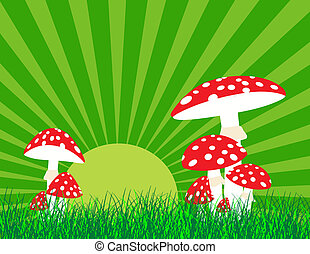 Red mushroom on grass at sunset, vector illustration