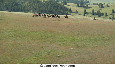 aerial shot of cowboys on mountaintop