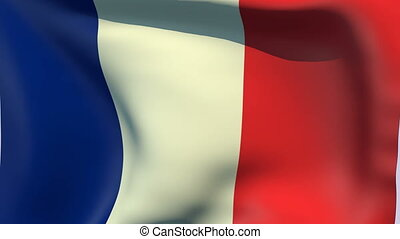 Flag of France - Flags of the world collection - France