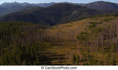 aerial shot of forest and mountains with dirt road