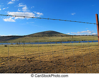 rustic wire fence to enclose the cattle in a large meadow