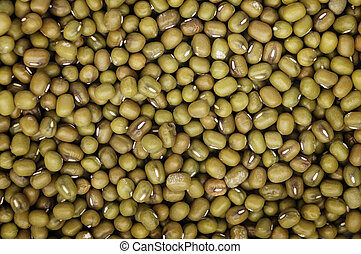 Vigna radiata, or mung beans, are used in a lot Asian...