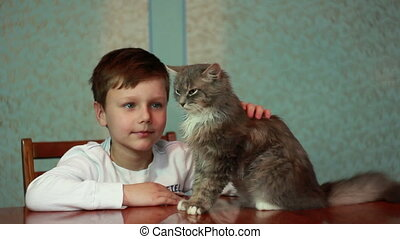 Boy plays with cat