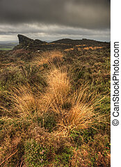 View across top of Ramshaw Rocks in Autumn in Peak District National Park