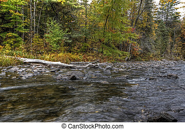 Fall forest and river landscape 09 - Forest river in the...