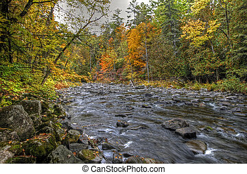 Fall forest and river landscape 12 - Forest river in the...