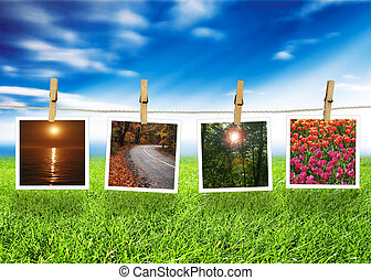 Natural photo concept